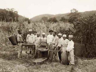 Série fotográfica retrata os últimos anos da escravidão no Brasil 3