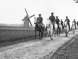 Cavalos na Primeira Guerra Mundial