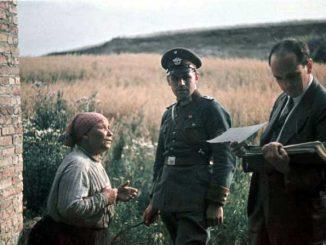 O Holocausto cigano durante a Segunda Guerra Mundial 2
