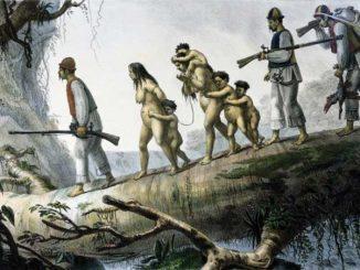 Os povos indígenas e a questão do trabalho no Brasil colonial 2