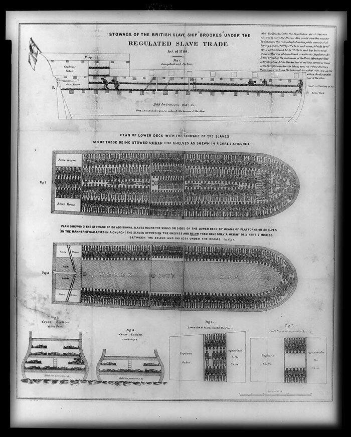 Navio de escravos britânico Brookes. Imagem: Library of Congress.