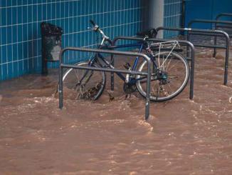 Pesquisadores desenvolvem app alimentado por alunos para ajudar no combate às enchentes 3